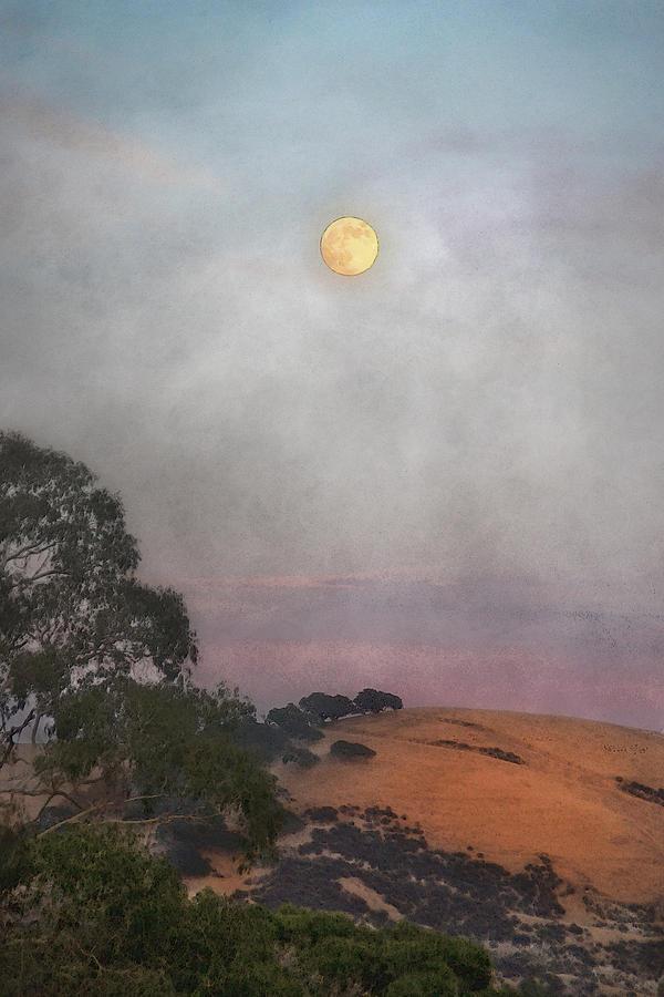 Moon Photograph - Moon Rising by Karen  W Meyer