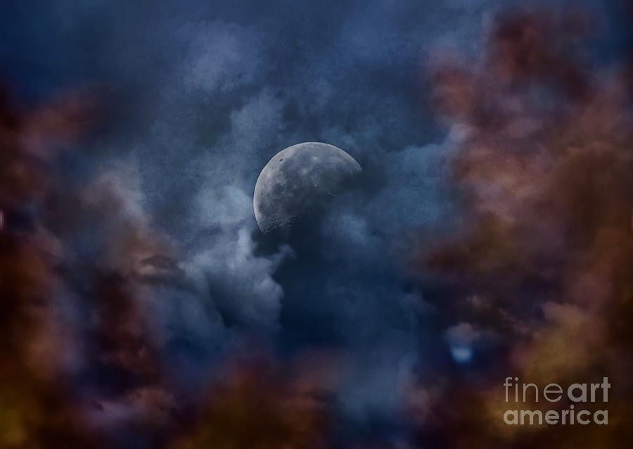 Moon Photograph - Moon Shine by Andrea Kollo