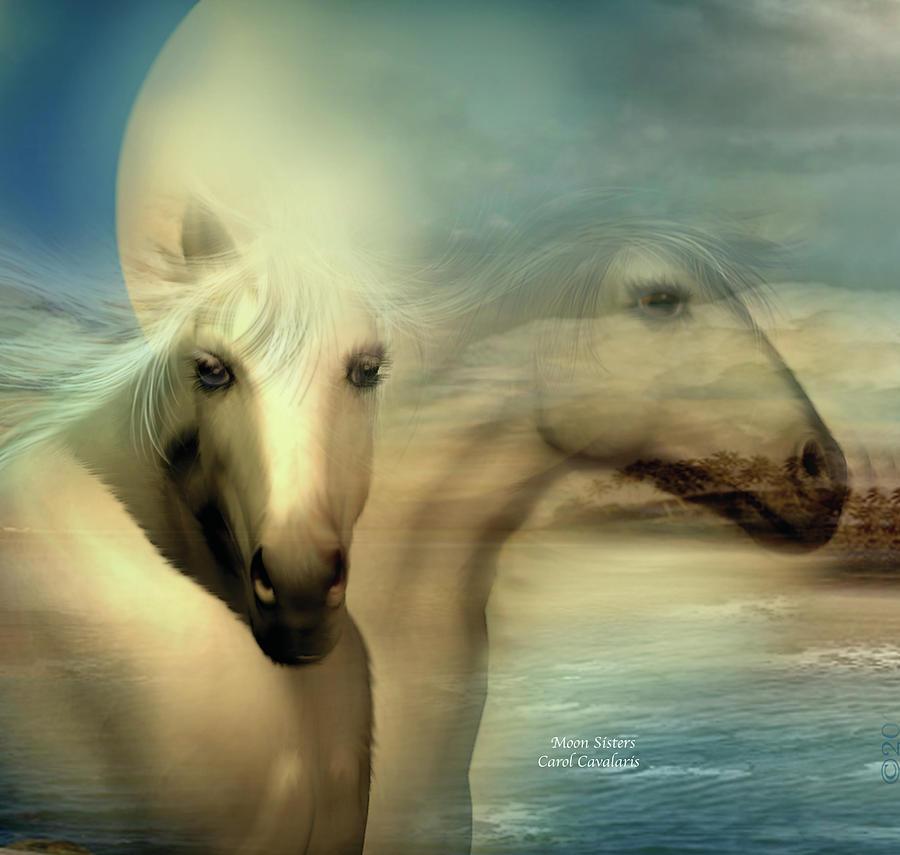 Horse Mixed Media - Moon Sisters by Carol Cavalaris