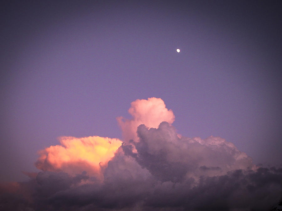 Sky Photograph - Moon Speck by Robert J Andler
