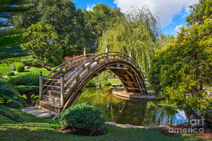 Moonbridge - The Beautifully Renovated Japanese Gardens At The Huntington Library. Photograph