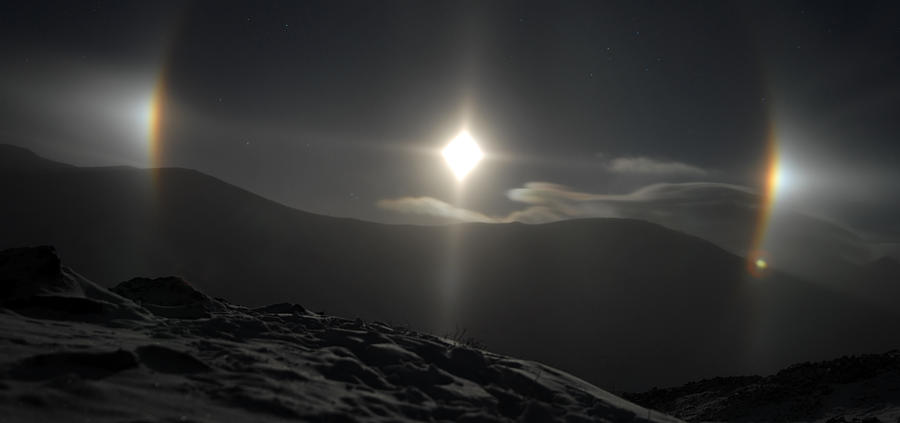 Moondogs Photograph by Tracy S...