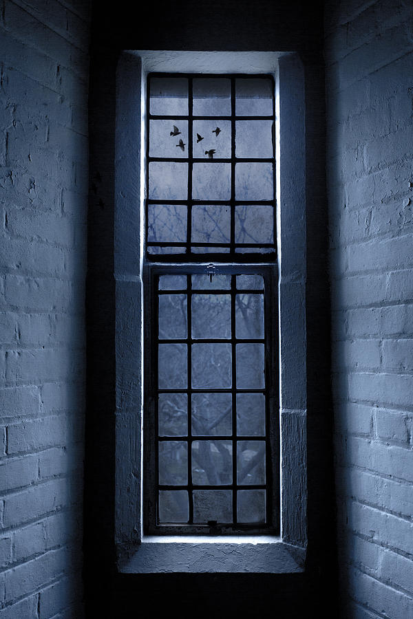 Window Photograph - Moonlight by Dale Kincaid