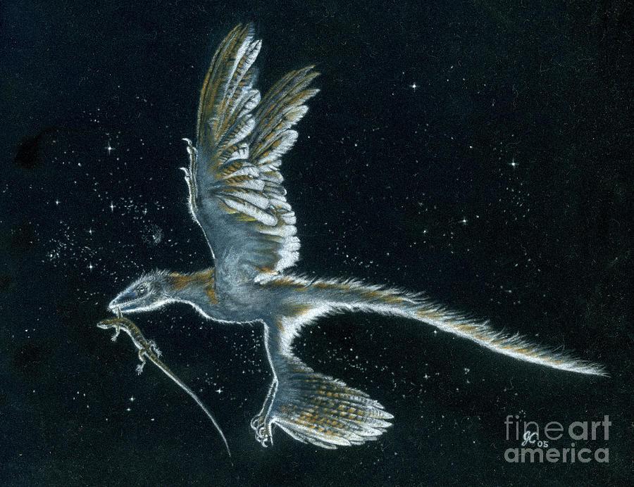 Dinosaur Painting - Moonlight hunt - Microraptor by Julius Csotonyi