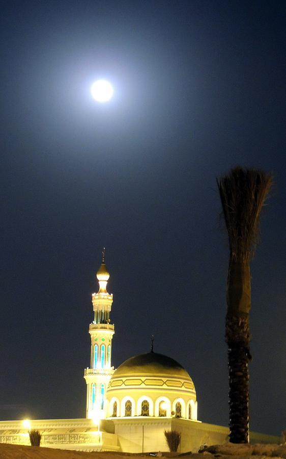 041dfb87f1 Moonlight Mosque Photograph by Heather Gordon
