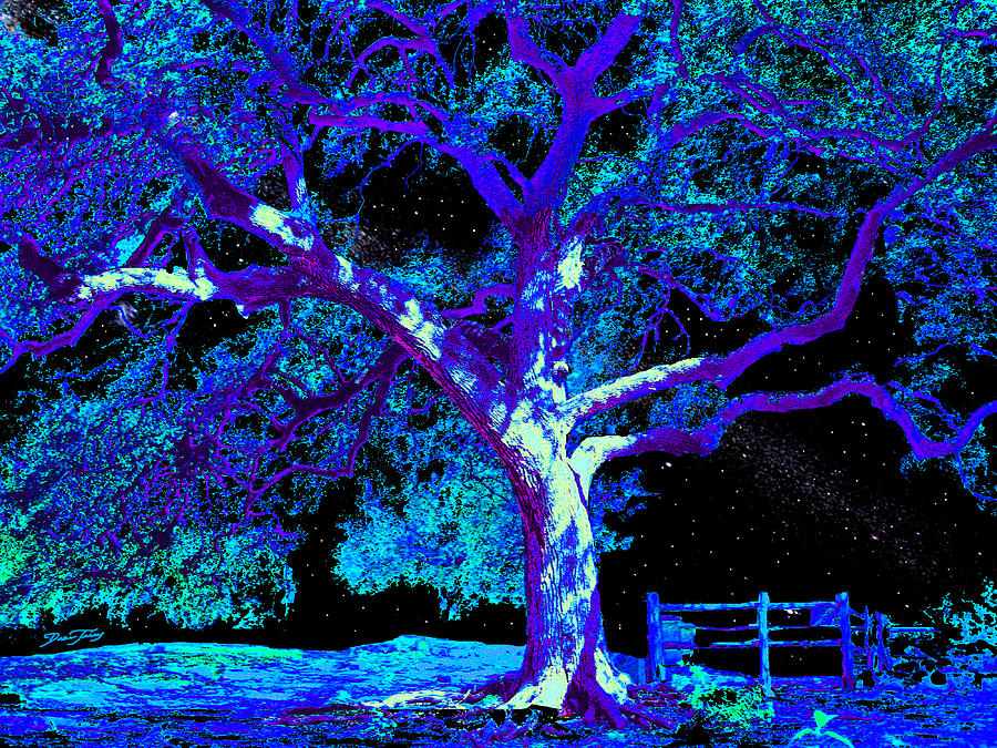 Tree Painting - Moonlight Oak by Dan Terry