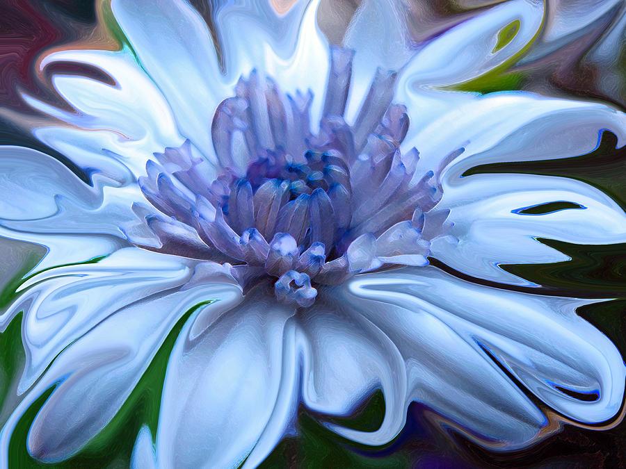 Abstract Flowers Digital Art - Moonlight Serenade by Suzy Freeborg