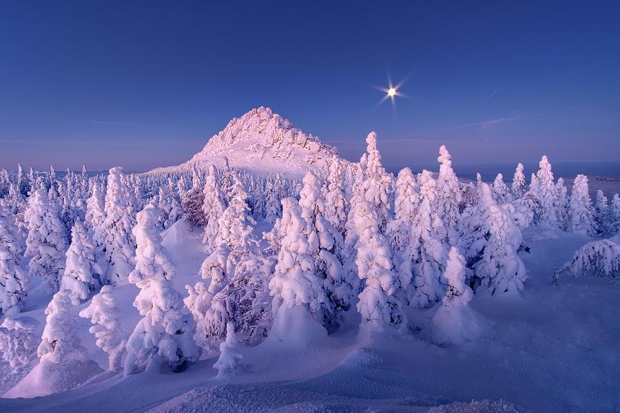 Winter Photograph - Moonlight Sonata by Dmitriy Kochergin