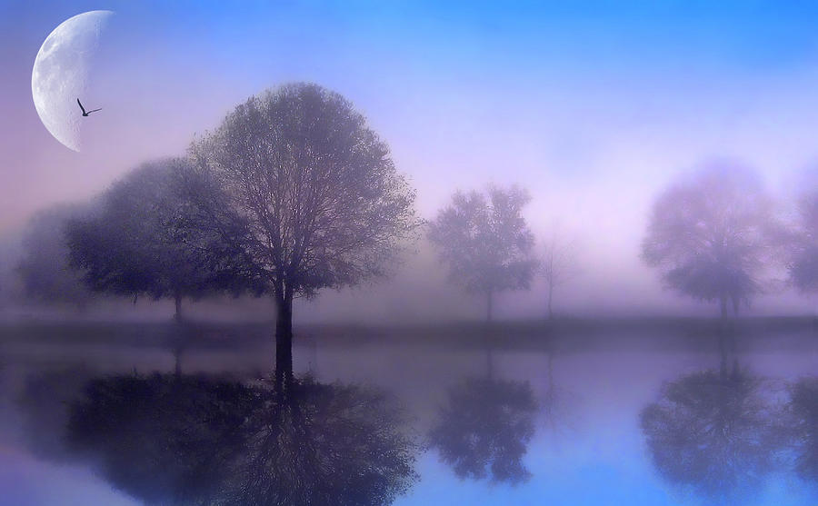 Fantasy Photograph - Moonlight Sonata by Jessica Jenney