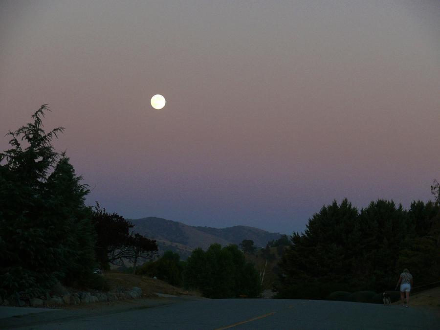 Moonlight Stroll Photograph - Moonlight Stroll by Jacquelyn Roberts