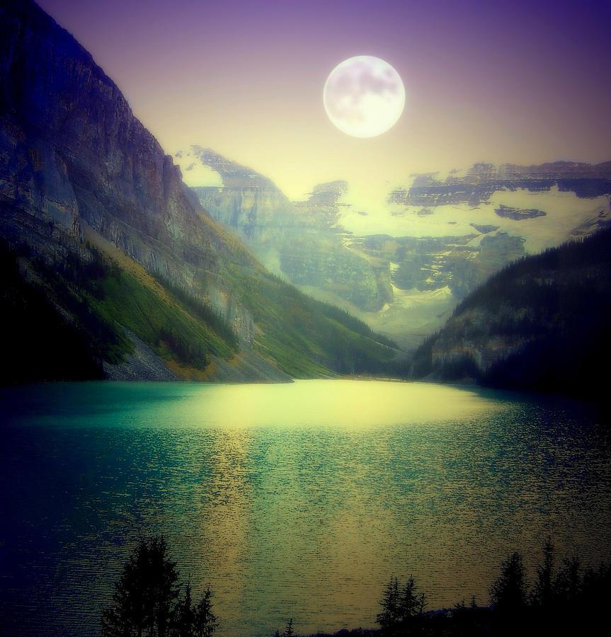 Lake Louise Photograph - Moonlit Encounter by Karen Wiles