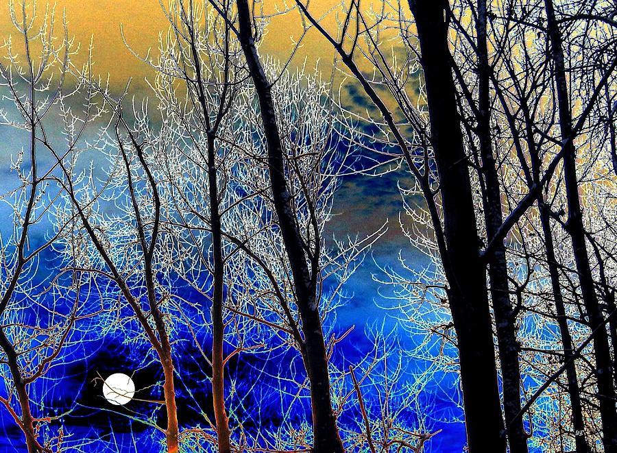 Full Moon Digital Art - Moonlit Frosty Limbs by Will Borden