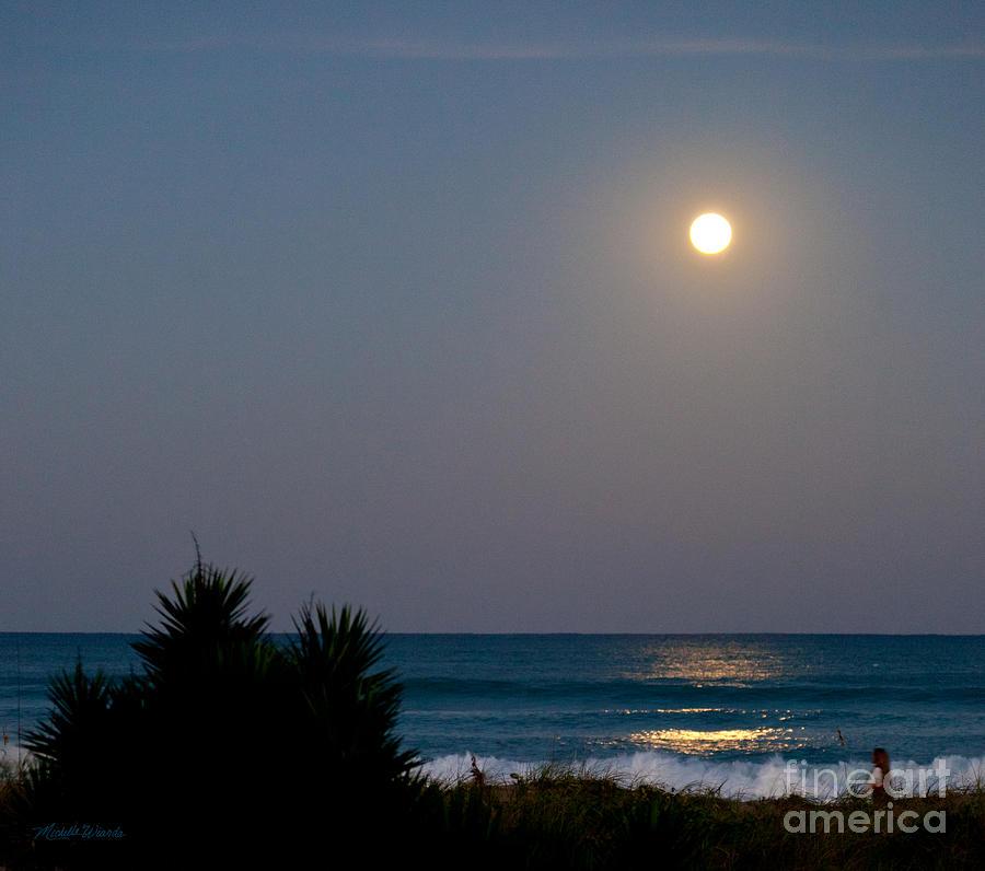 Moon Photograph - Moonlit Stroll by Michelle Wiarda