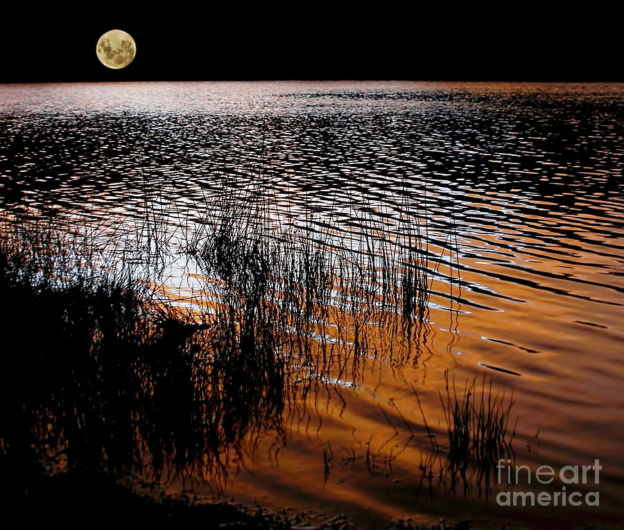 Sunset Photograph - Moonrise After Sunset by Kaye Menner