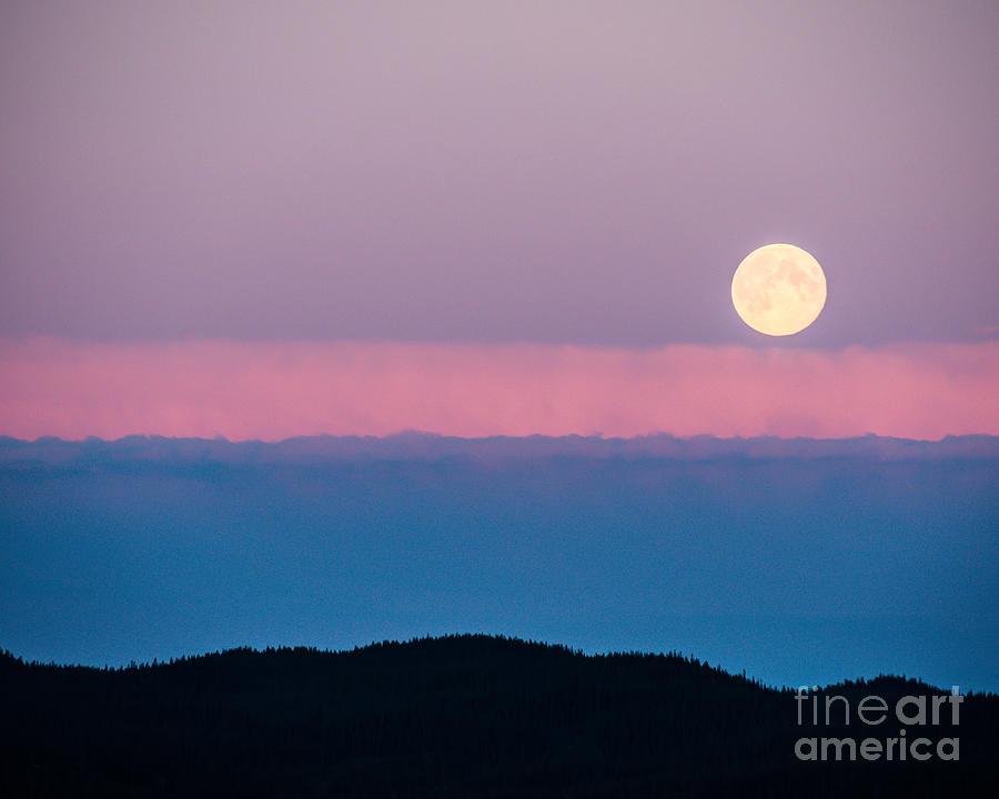 Pink Clouds Photograph - Moonrise by Christina Klausen