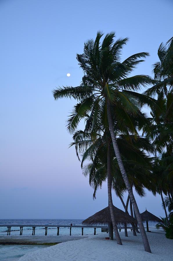 Beach Photograph - Moonrise In Maldives by Corinne Rhode