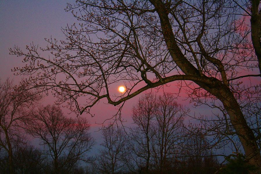 Moon Photograph - Moonrise by Kathryn Meyer