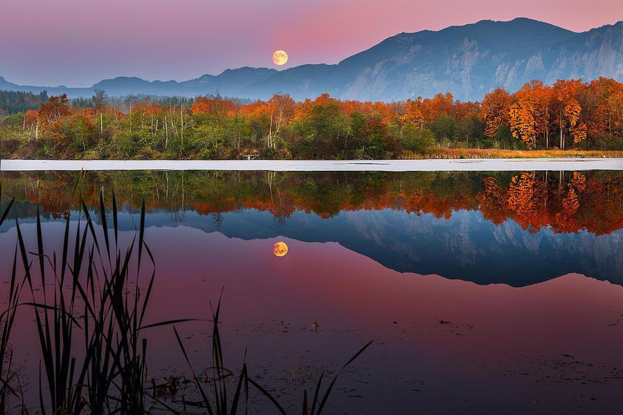 Millpond Photograph - Moonrise Over Millpond by Manju Shekhar