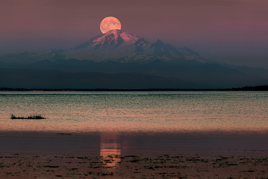 Moonrise over Mount Baker by Alexis Birkill