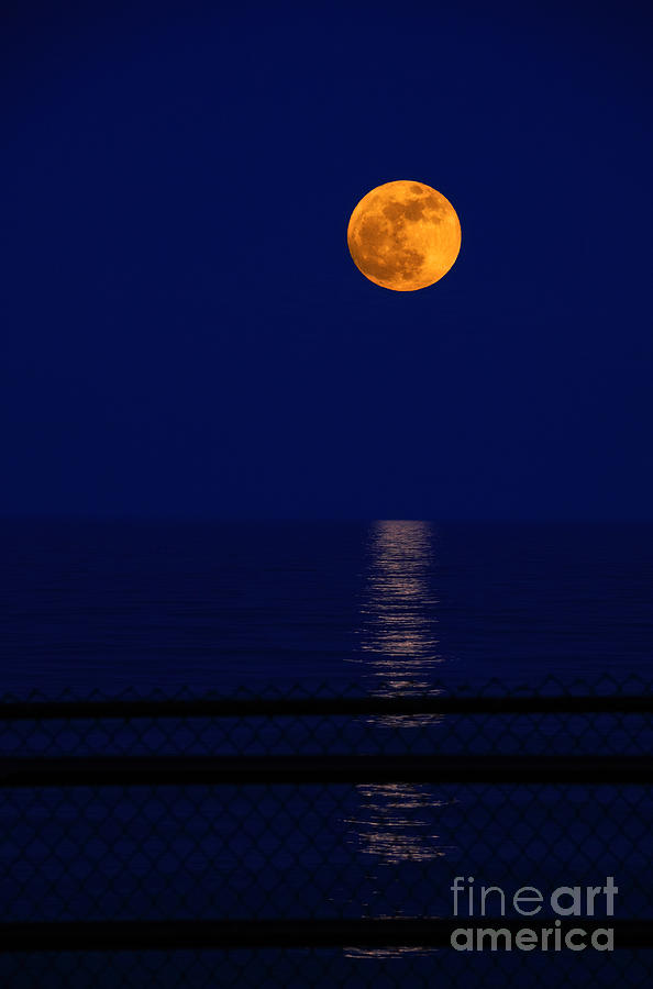 Moon Photograph - Moonrise Over Water by Charline Xia