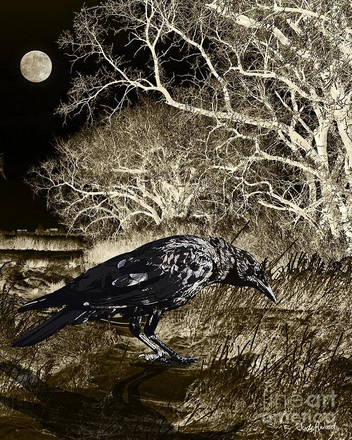Crow Digital Art - Moonshadow by Judy Wood