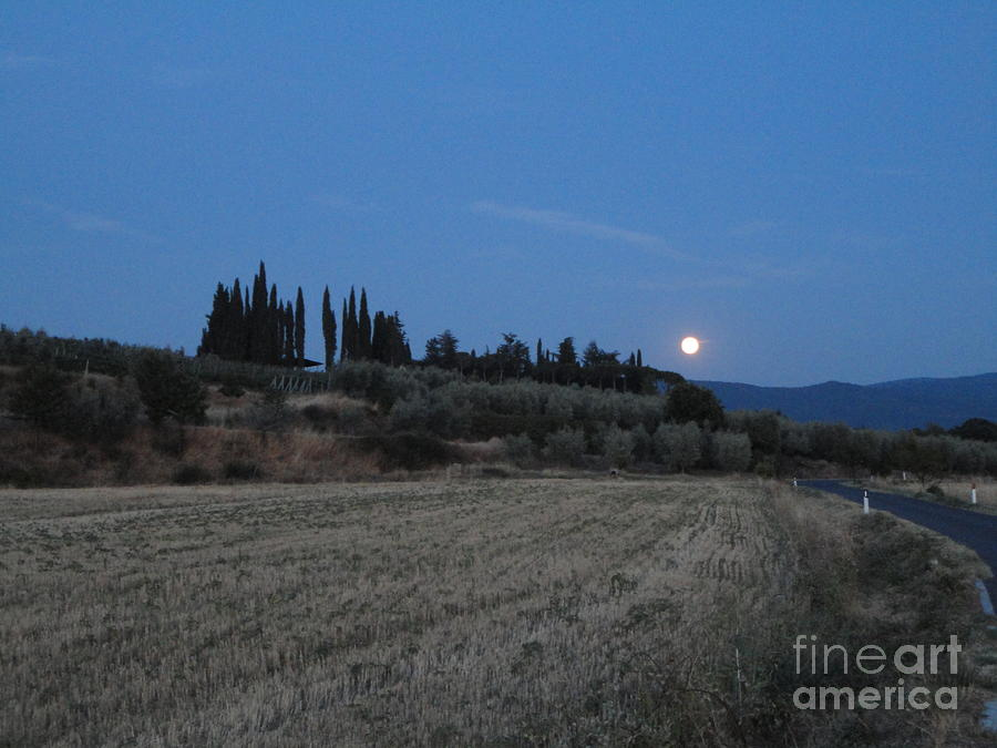 Tuscany Photograph - Moonshine In Arezzo by Alessandra Di Noto