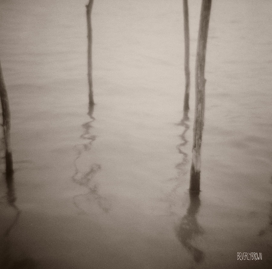 Sepia Photograph - Moorings Venice by Beverly Brown