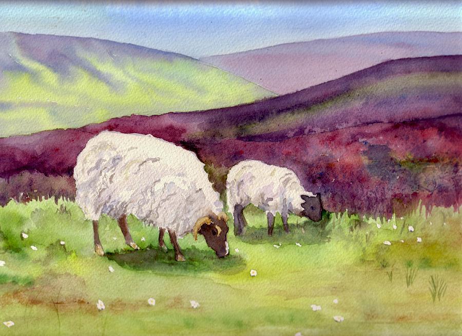овцы рисунок красками последний год второй