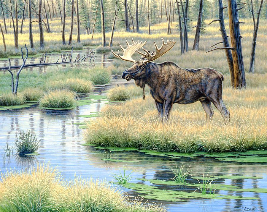 Wildlife Painting - Moose Country by Paul Krapf