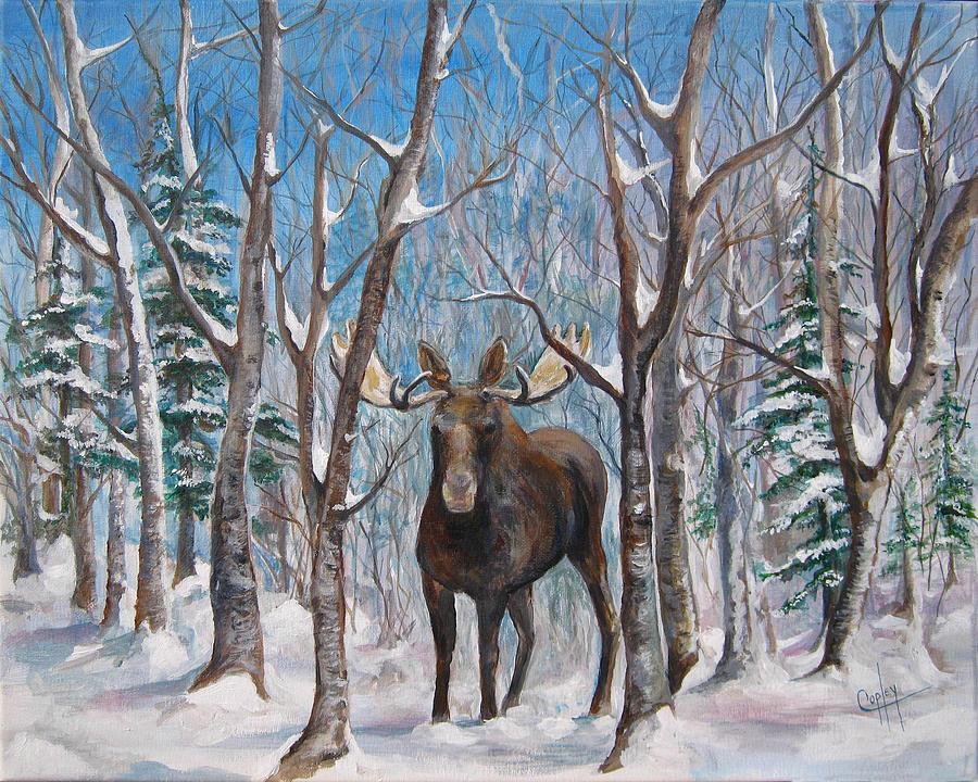 Moose Painting - Moose in winter birches by Karen Copley