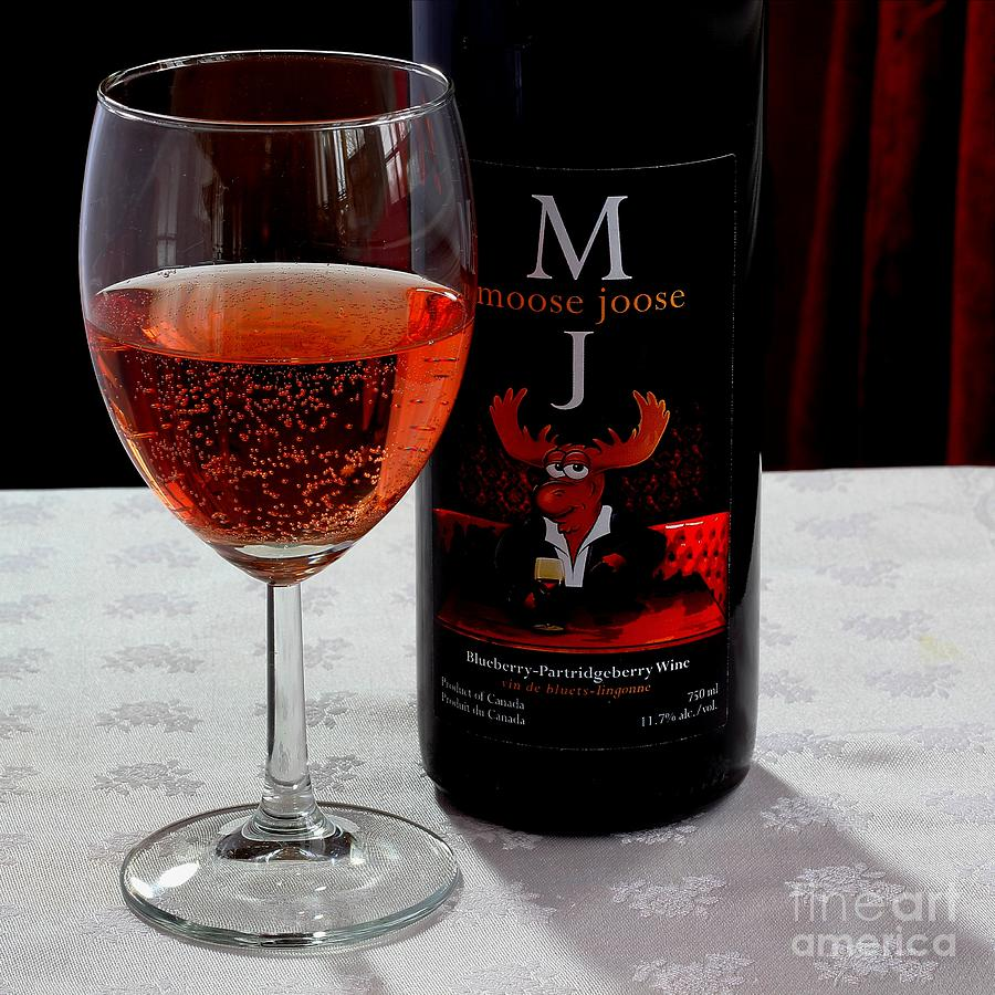Moose Joose Photograph - Moose Joose - Blueberry Partridgeberry Wine  by Barbara Griffin