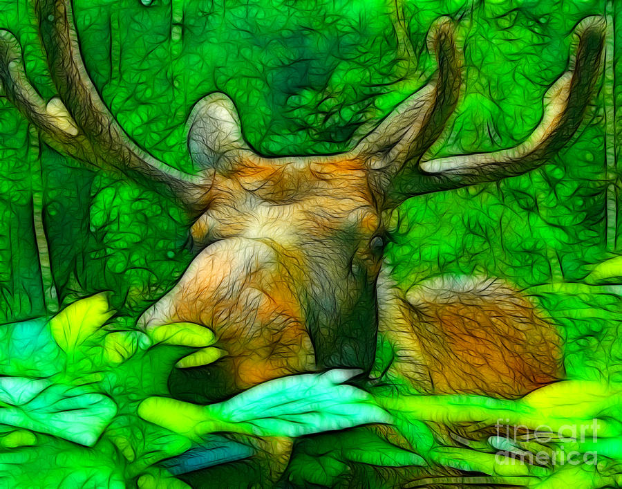 Moose Mixed Media - Moosing You by Francine Dufour Jones