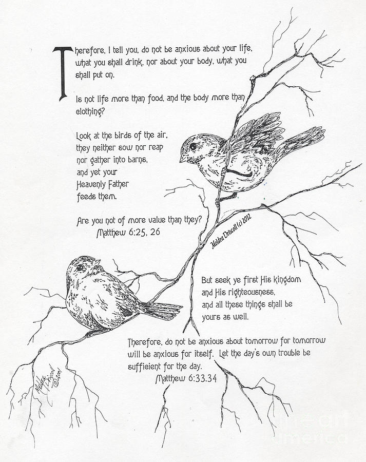 Encouragement Drawing - More Important Than Birds by Meldra Driscoll