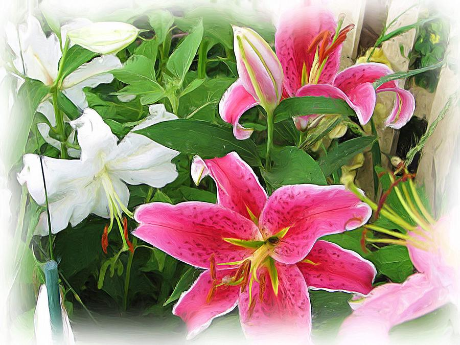 Pink Mixed Media - More Lilies by Victoria Sheldon