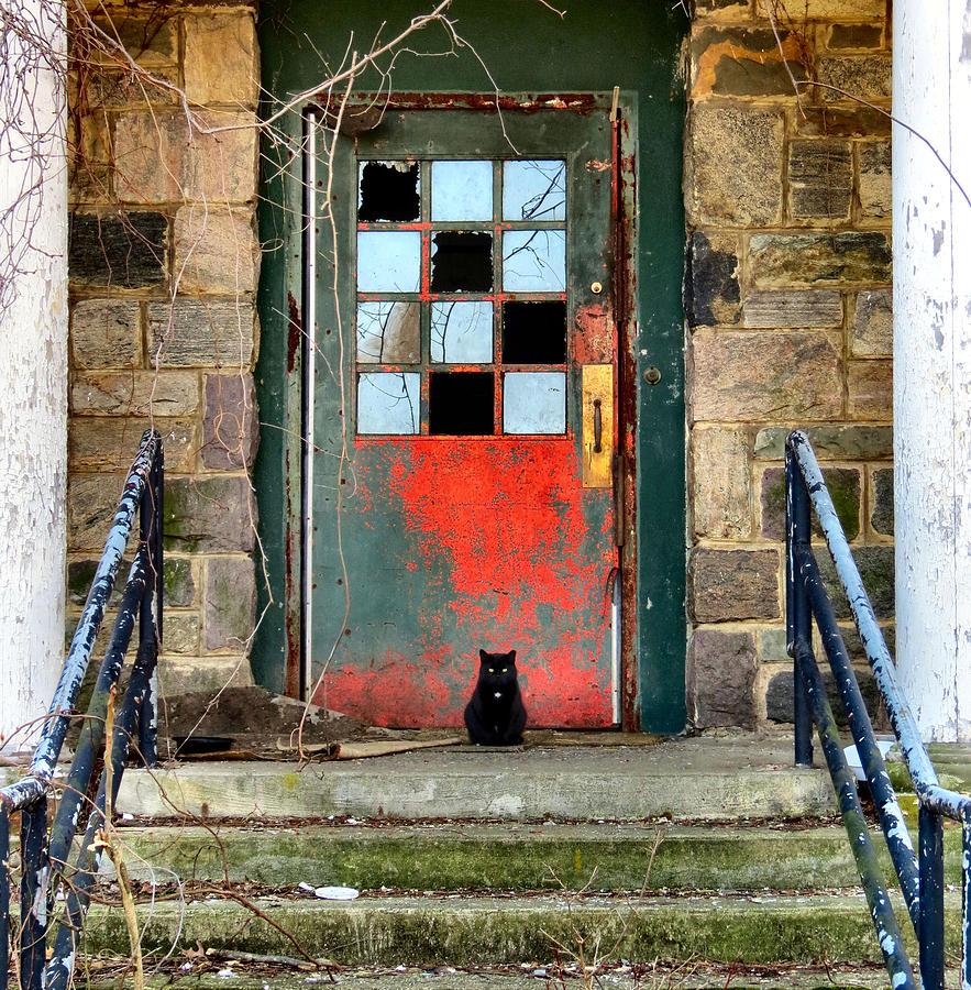 Haunt Photograph - More Than Spirits by Art Dingo