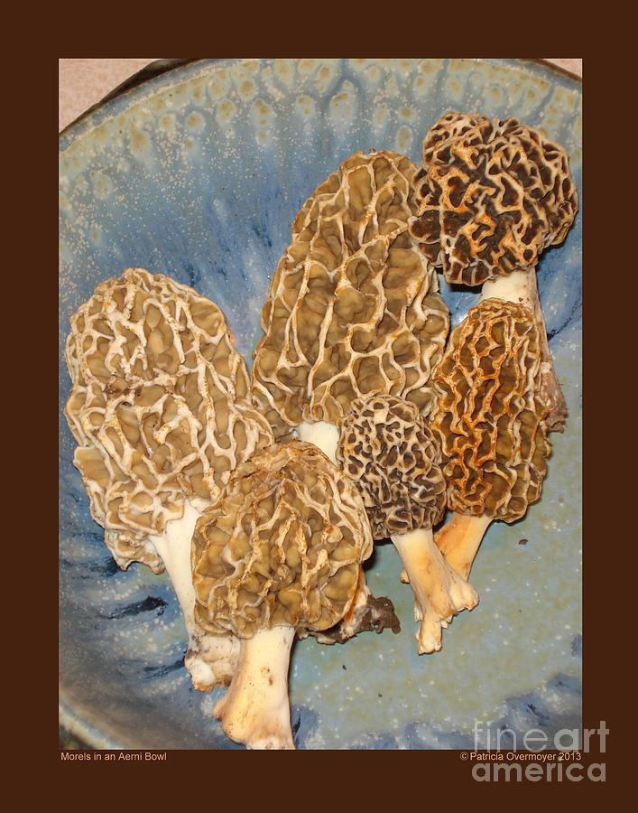 Morel Photograph - Morels In An Aerni Bowl by Patricia Overmoyer