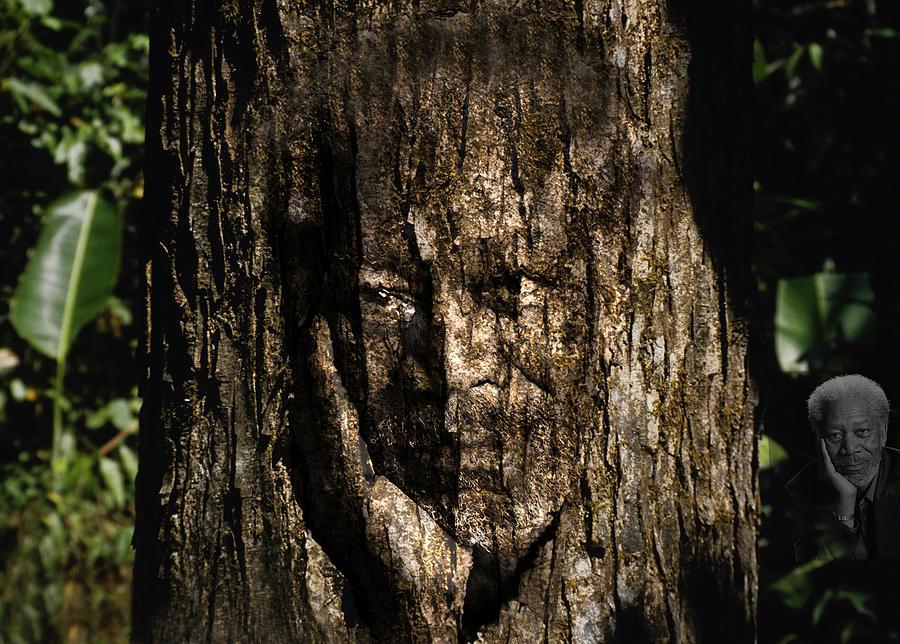 Morgan Freeman Painting - Morgan Freeman Roots Digital Painting by Georgeta Blanaru