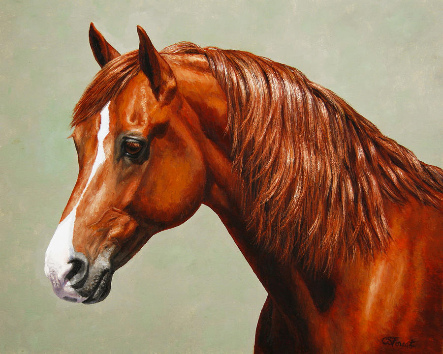 Horse Painting - Morgan Horse - Flame - Mirrored by Crista Forest