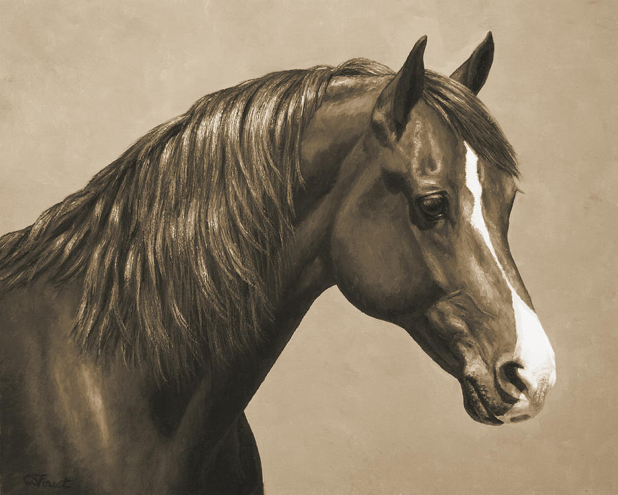 Horse Painting - Morgan Horse Painting In Sepia by Crista Forest