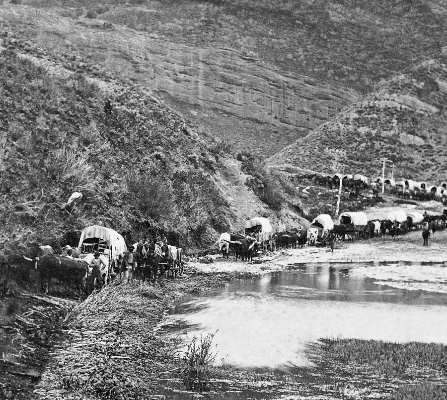 Mormon Photograph - Mormon Emigrant Conestoga Caravan 1879 - To Utah by Daniel Hagerman