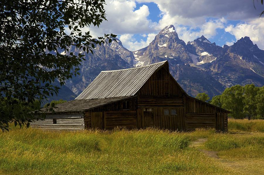 Grand Teton Photograph - Mormon Row by Terry Horstman