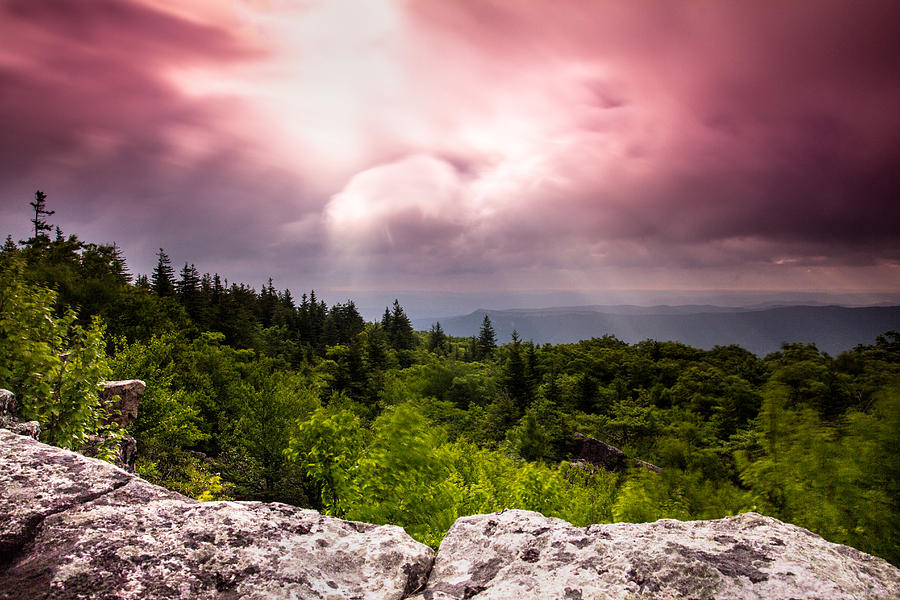 Dolly Sods Photograph - Morning At Dolly Sods by Shane Holsclaw