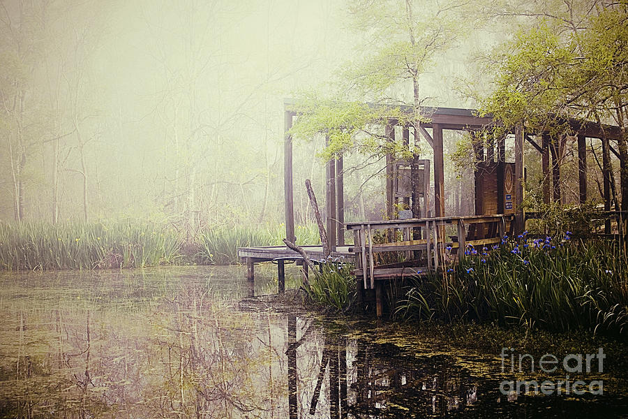 Fog Photograph - Morning At The Nature Center by Katya Horner