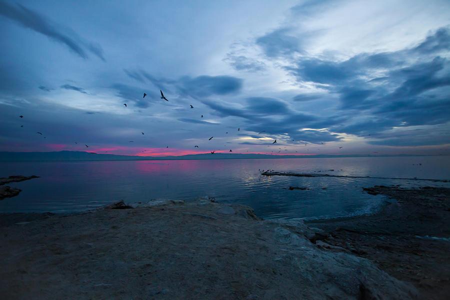 Seascape Photograph - Morning Blues by Dennis Hofelich