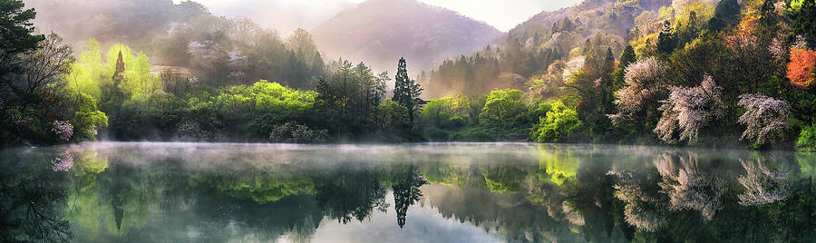 Misty Photograph - Morning Calm by Tiger Seo