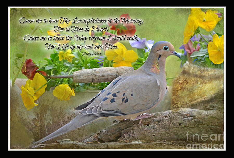 Nature Photograph - Morning Dove With Verse by Debbie Portwood