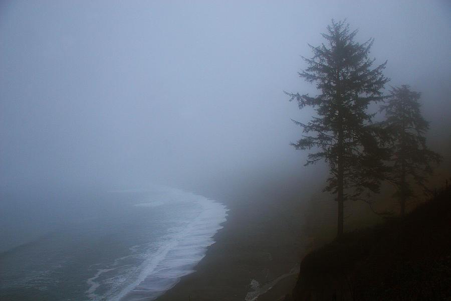 Beach Photograph - Morning Fog At Agate Beach by Robert Woodward
