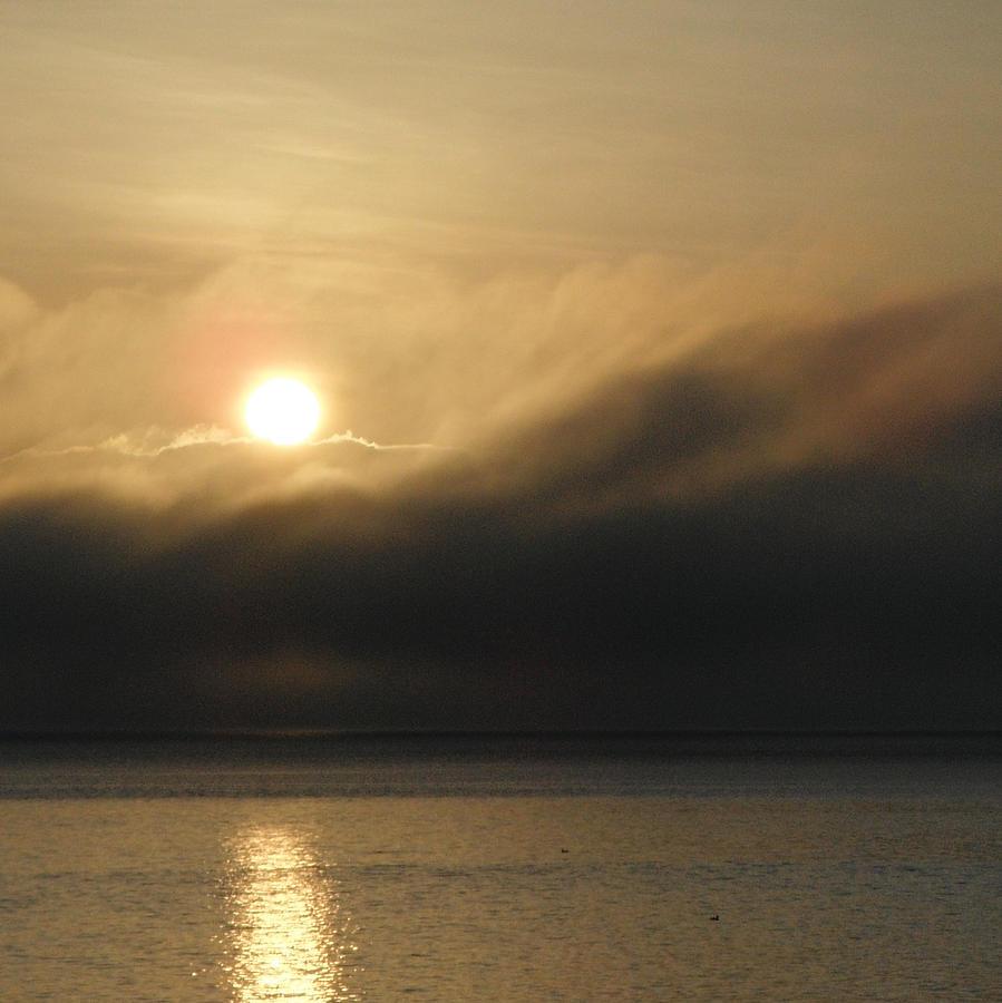 Fog Photograph - Morning Fog by A Cyaltsa Finkbonner