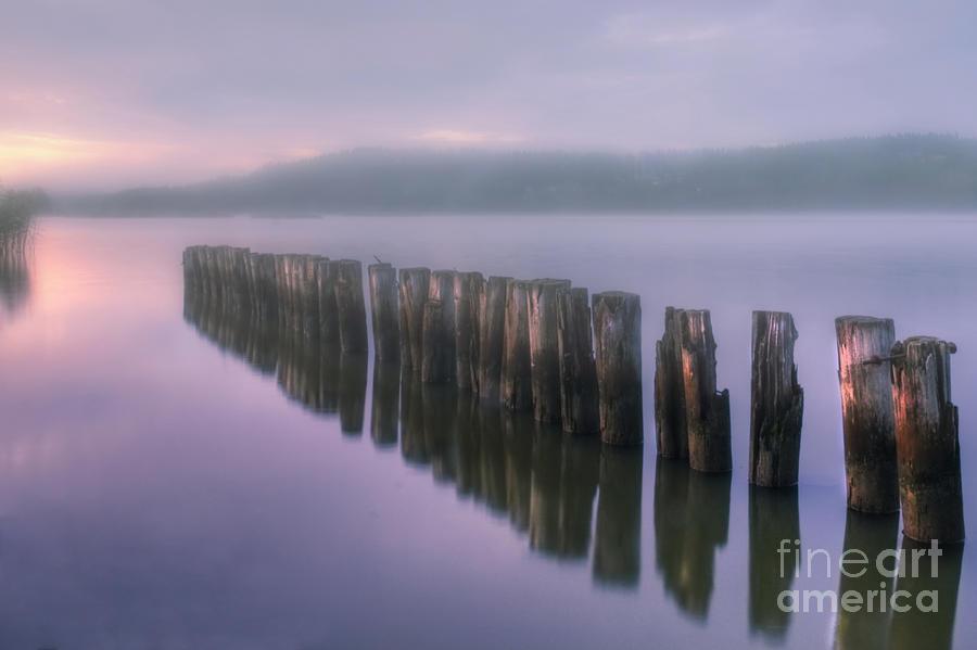 Artist Photograph - Morning Fog by Veikko Suikkanen