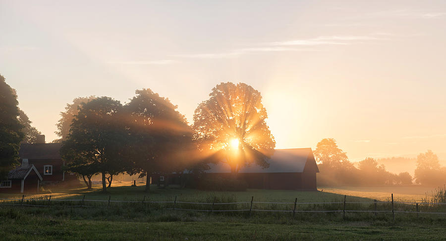 Countryside Photograph - Morning Has Broken by Christian Lindsten